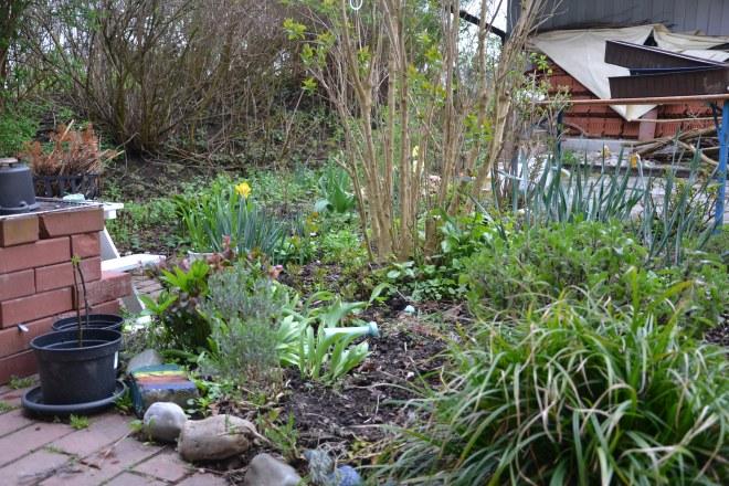 Die Kräuterabteilung im Vorgarten